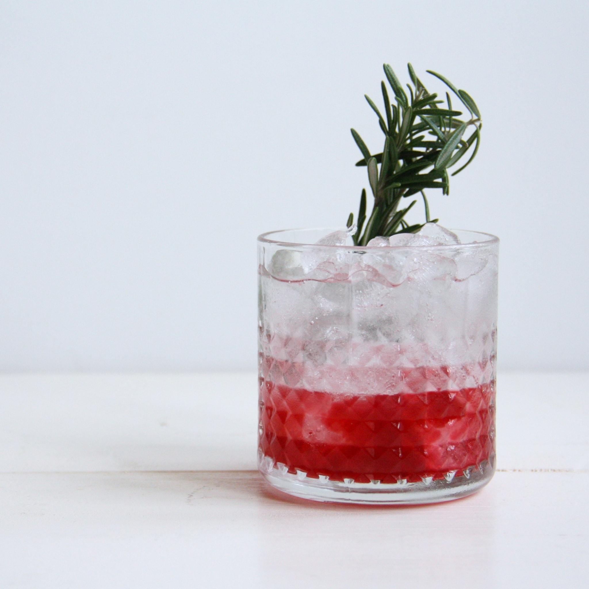Gin tonic met cranberries culinessa 1