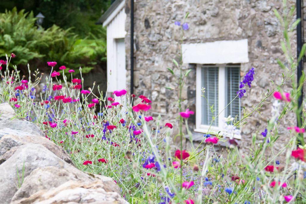 culinessa mhor-flowers