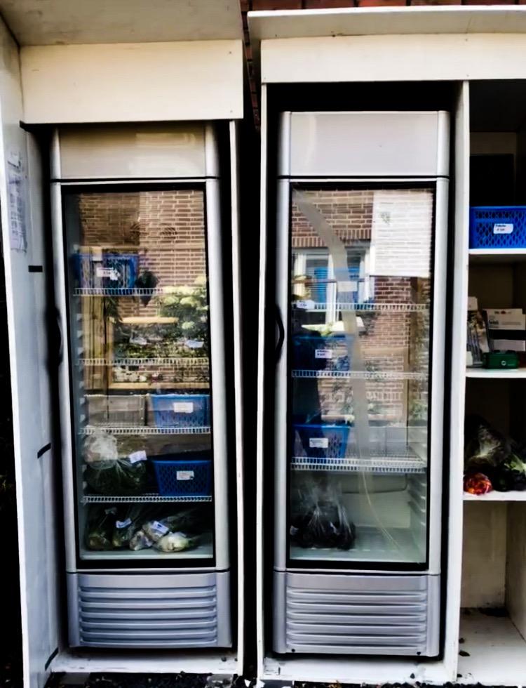 oost oogst koelkast